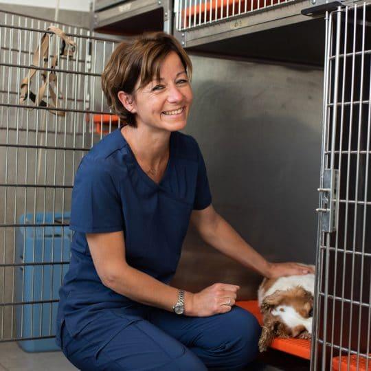 Veterinaire la Colle sur Loup Hospitalisation 7