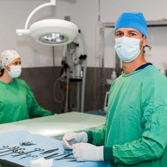 veterinaire la colle sur loup chirurgie